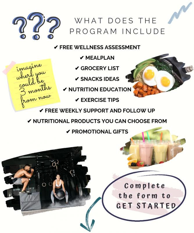 Personal wellness coach_program